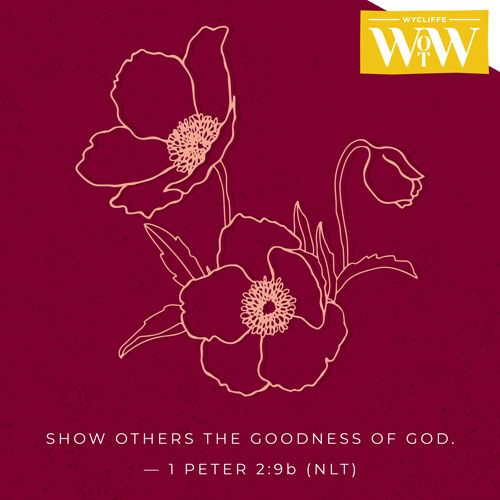 'Show ohers the goodness of God.' - 1 Peter 2:9b (NLT)