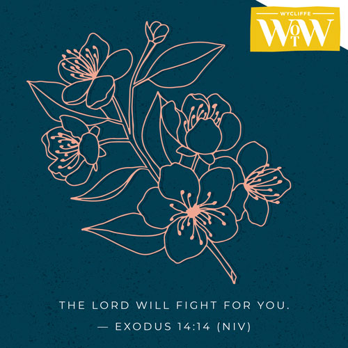 'The Lord will fight for you.' - Exodus 14:14 (NIV)