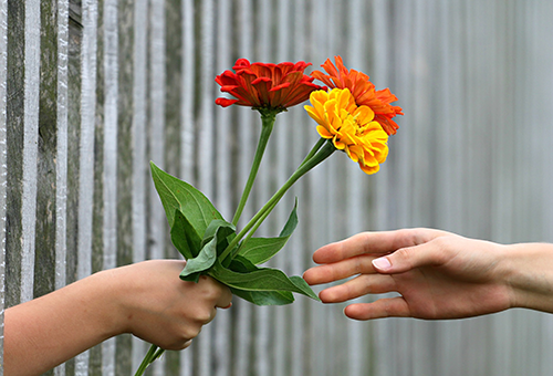 hand holding flowers, giving to another hand