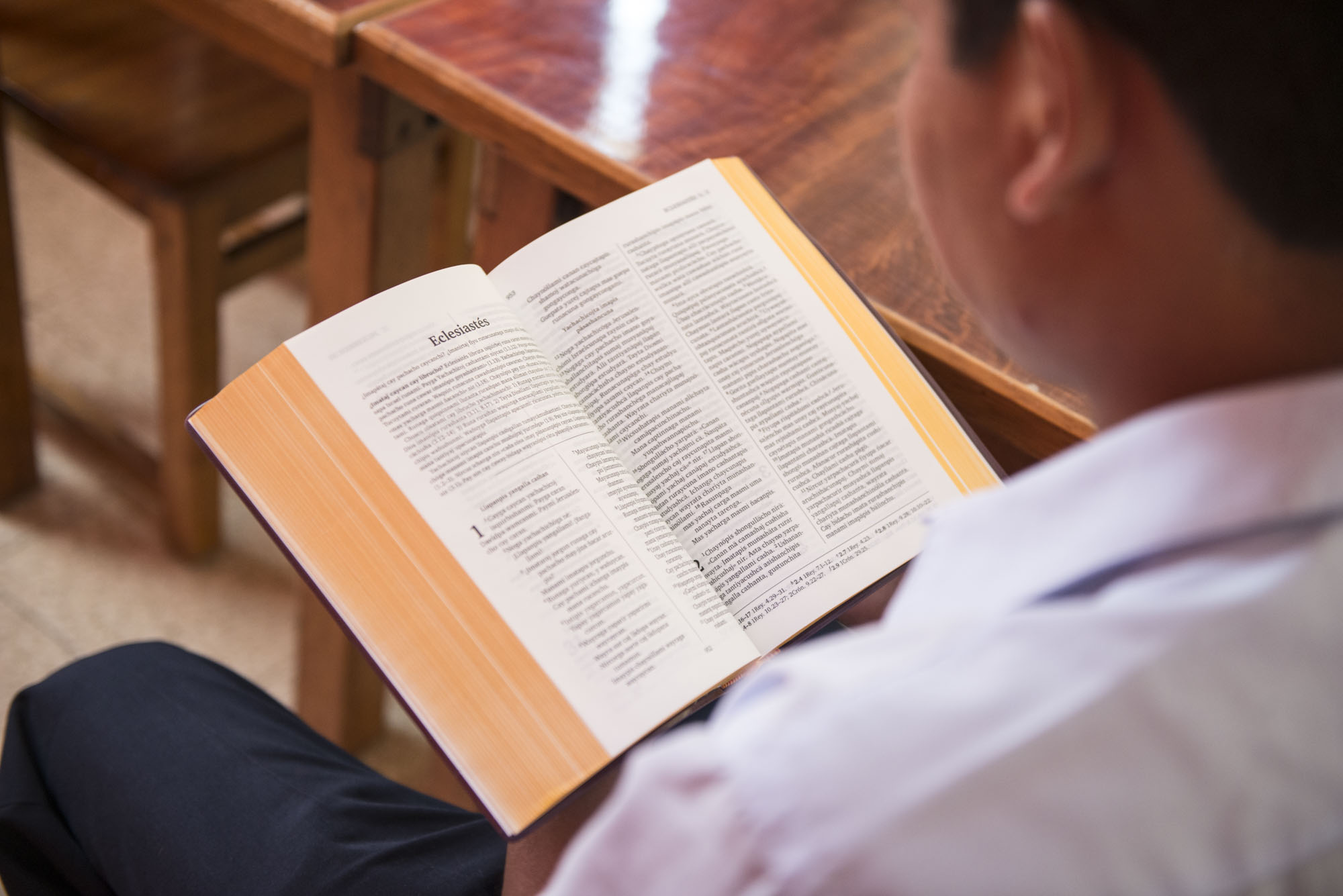 Taste and See | Wycliffe Bible Translators