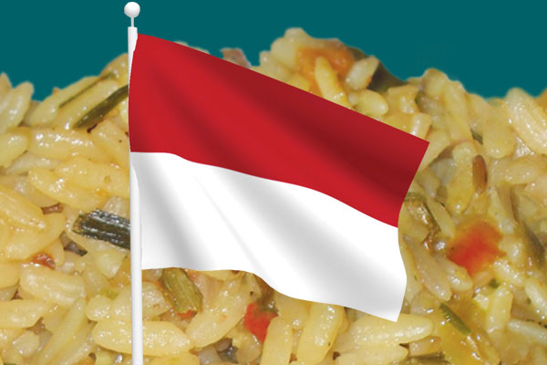 Fried rice dish and Indonesian flag