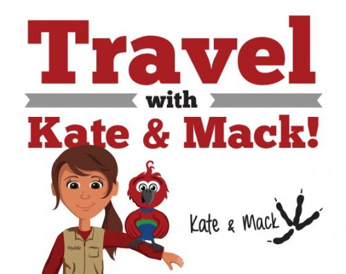 Travel Kate