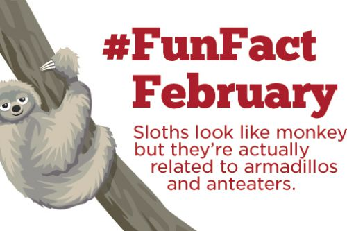 #FunFactFebruary With Kate & Mack